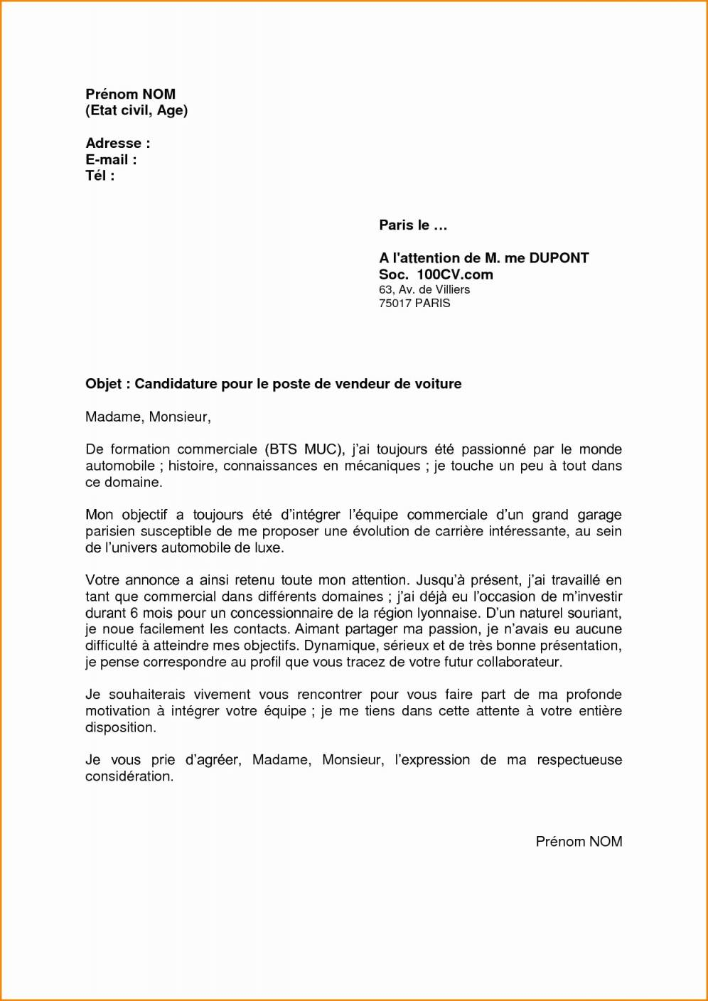 stage assistant parlementaire cv
