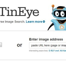 Trouvez des images avec TinEye