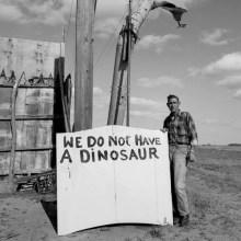 Nous n'avons pas de dinosaure