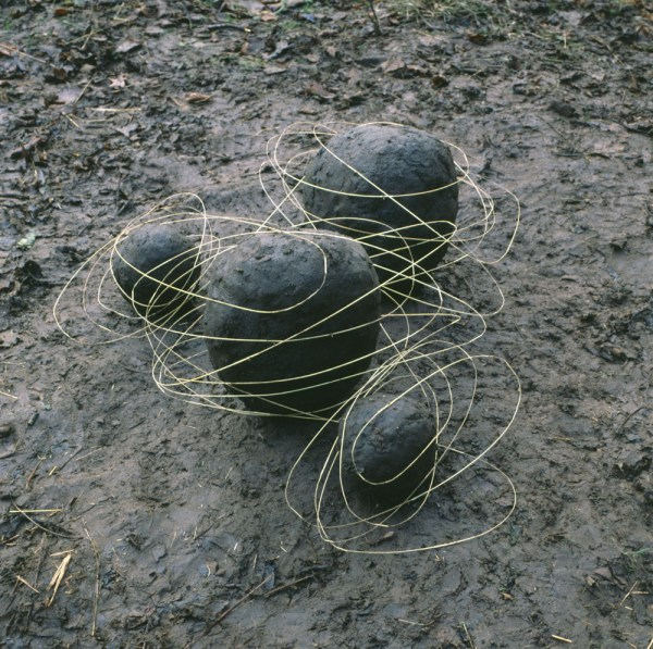 Les Oeuvres Dans La Nature 'andy Goldsworthy