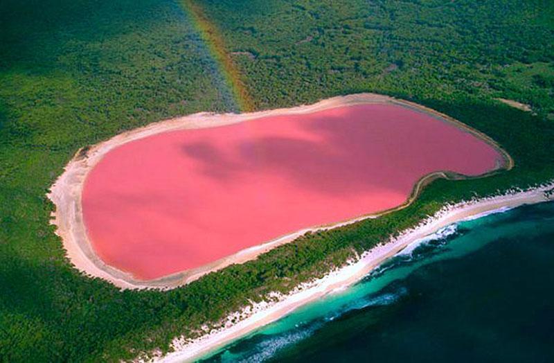 lac rose hillier australie 04 Le lac Hillier, un lac rose en Australie