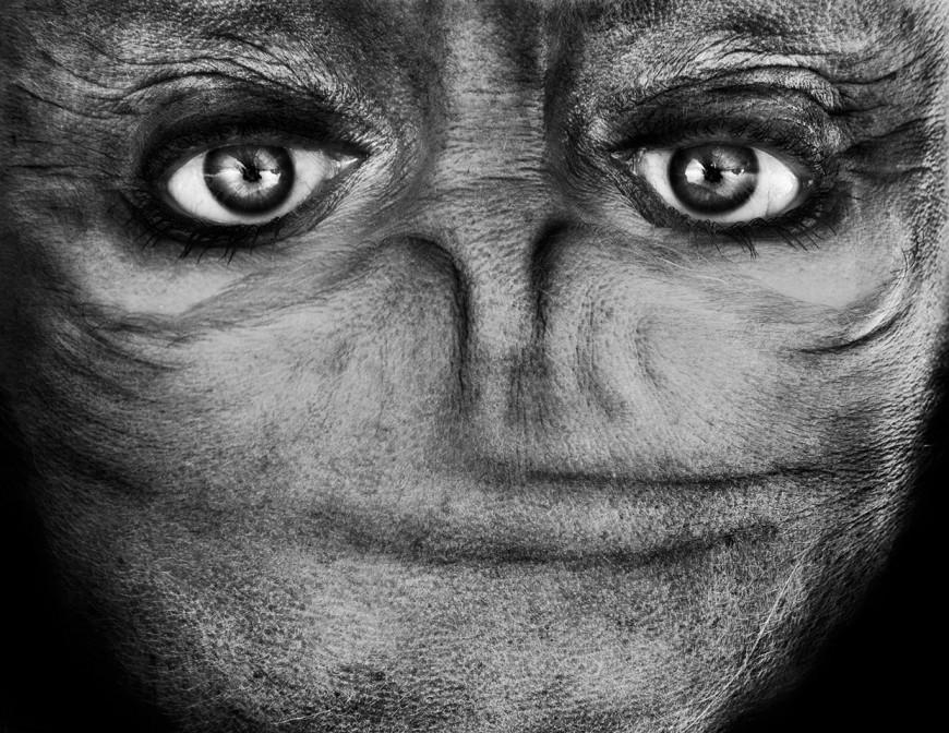 ride visage retourne alien 10 870x672 Des visages à lenvers