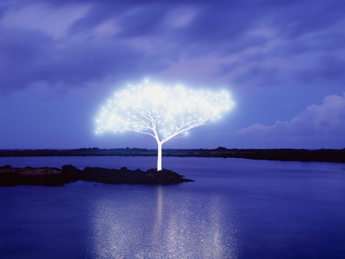 lee jeong lok arbre lumiere 05 la