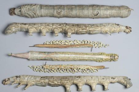 modele-anatomique-docteur-Auzoux-1820-28