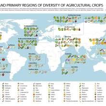 Une carte de la région d'origine des fruits et légumes