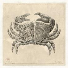 Des crustacés mécaniques avec des entrailles d'engrenages