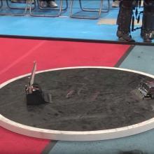 Les duels poignants des mini-robots sumotoris
