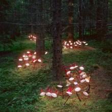 D'étranges installations d'objets dans les forêts norvégiennes
