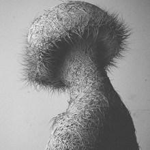 La déformation des formes corporelles par Can Pekdemir