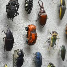 Une toute petite surprise cachée dans un musée