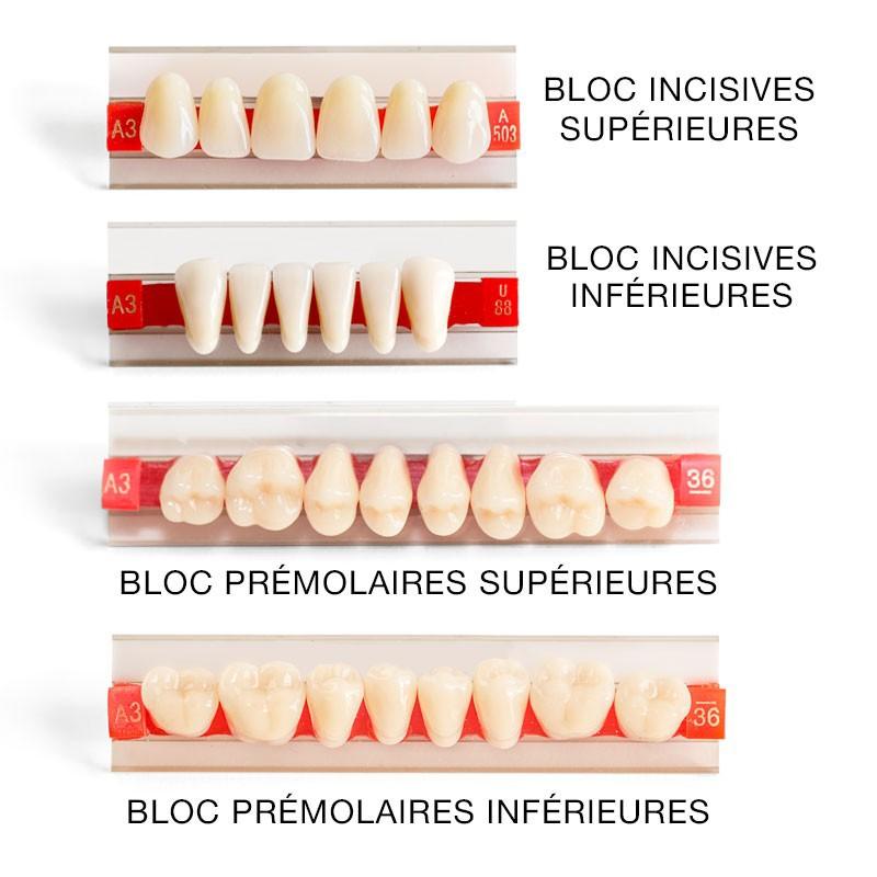 Dents pour dentier Rparer un appareil dentaire ou