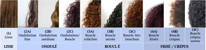 Les différents types de cheveux et classification selon André Walker