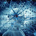 Un preparato contro i sintomi della sclerosi multipla