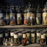 Perché affidarsi ad un preparato galenico