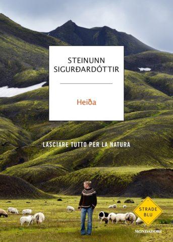 HEIDA Book Cover