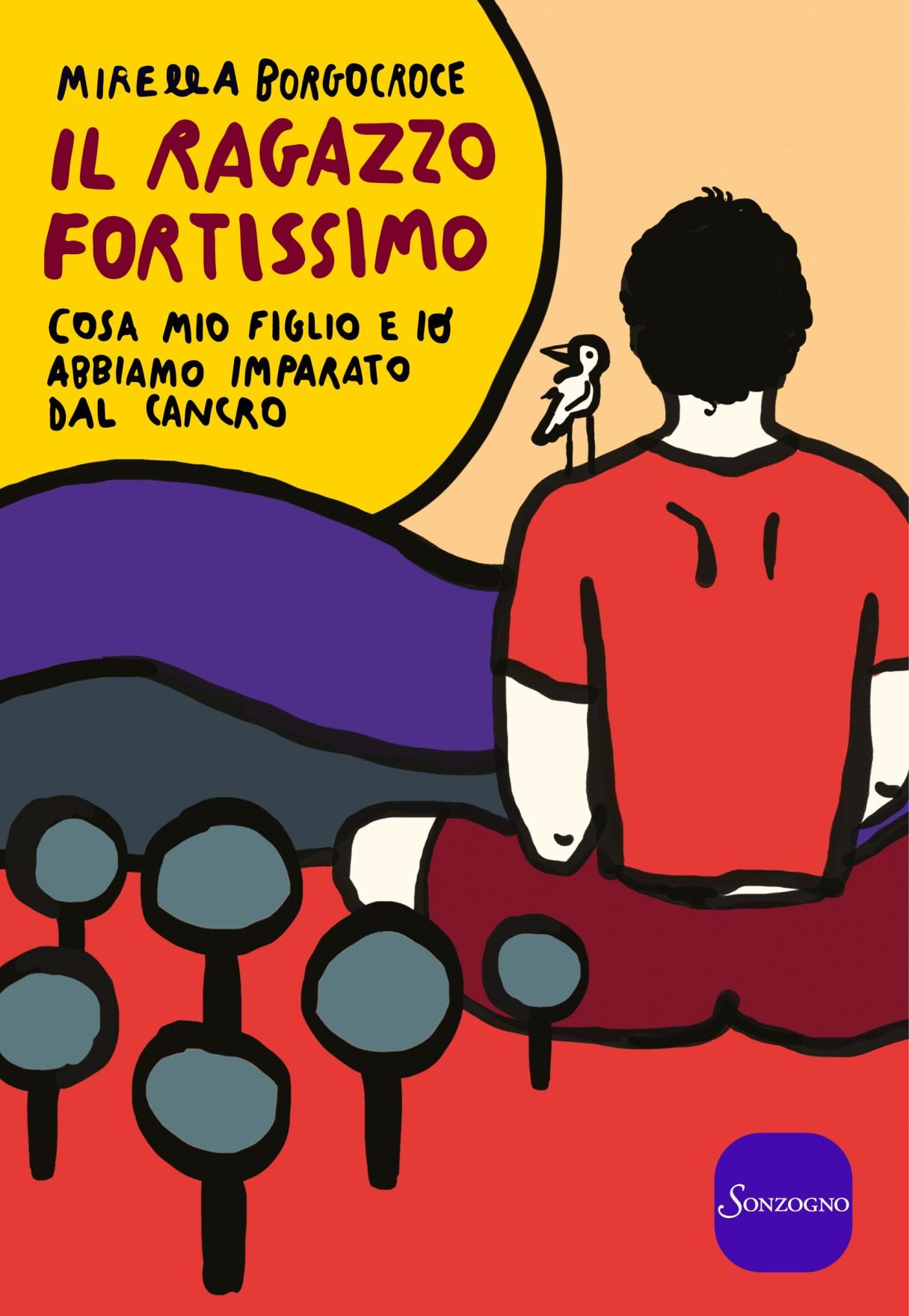 IL RAGAZZO FORTISSIMO Book Cover