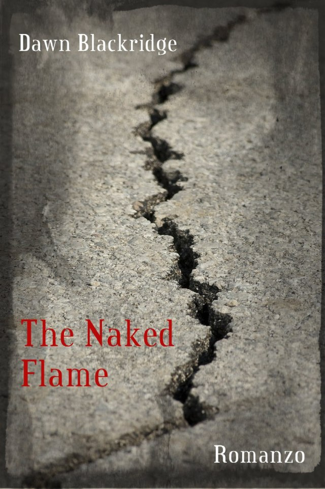 THE NAKED FLAME Book Cover