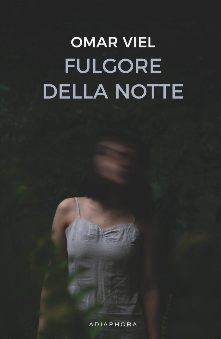 Fulgore nella notte Book Cover