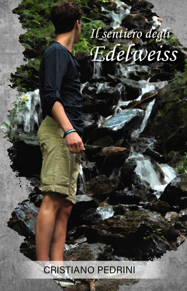 Il sentiero degli edelweiss Book Cover