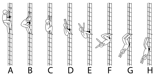 Alert: Fixed Rail Ladder (FRL) Fall Protection System