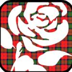Labour-Hame-rose