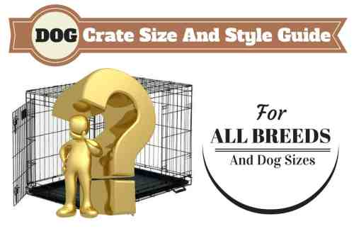 small resolution of dog size diagram