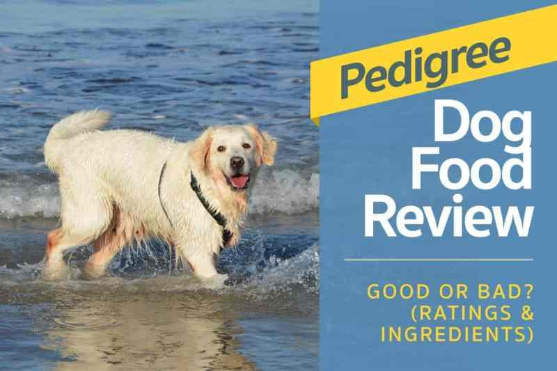 Whole Earth Farms Dog Food Recall