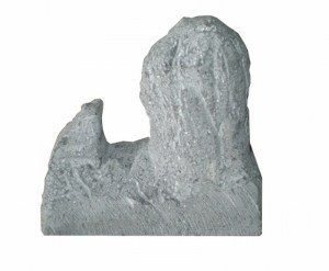 Roque Nublo 3D