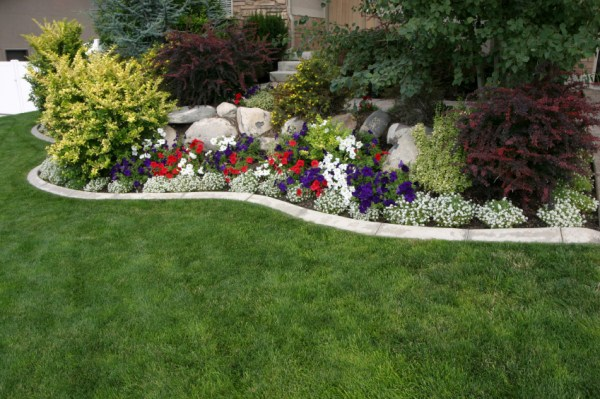backyard scaping florida landscaping