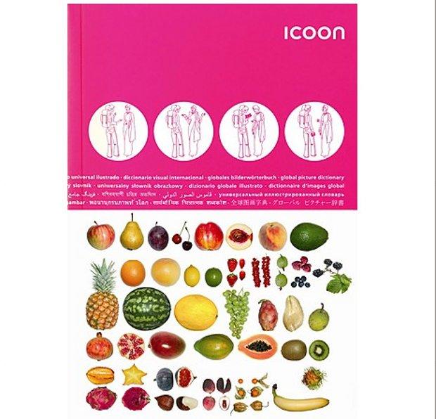 Icoon diccionario visual entenderse cualquier país