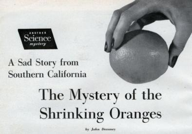 El misterio de las naranjas de California