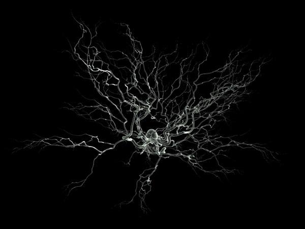 Consiguen clonar neuronas del cerebro humano