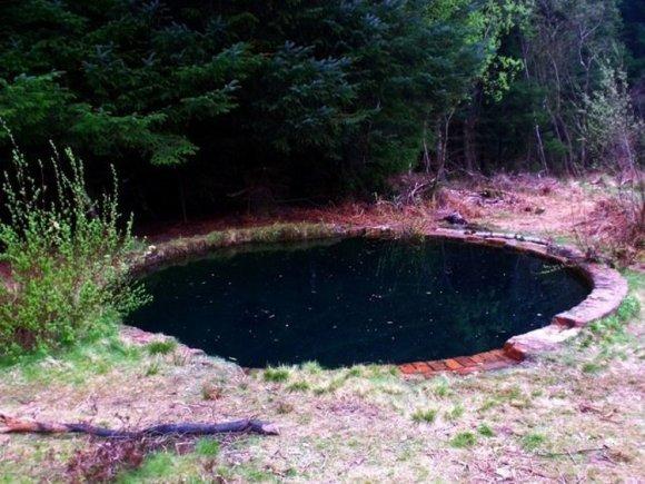 Torwood Blue Pool piscina misteriosa 2
