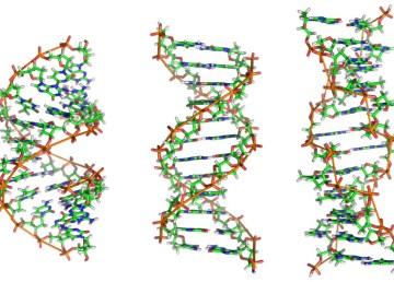 Un Arca de Noé rusa con ADN de todos los seres vivos