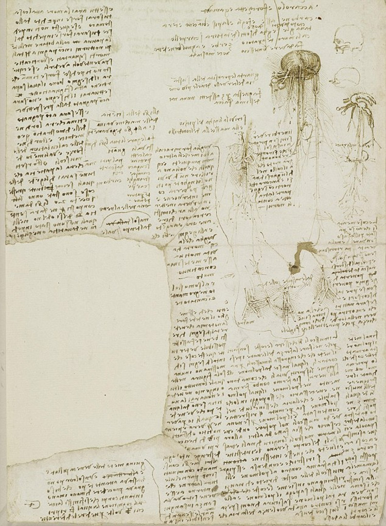 Encuentran agenda tareas pendientes Leonardo da Vinci