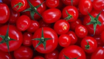 Sustancias tóxicas en las patatas, tomates y berenjenas