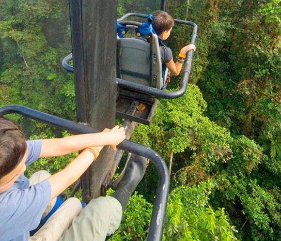 Pedaleando copas arboles Ecuador 4