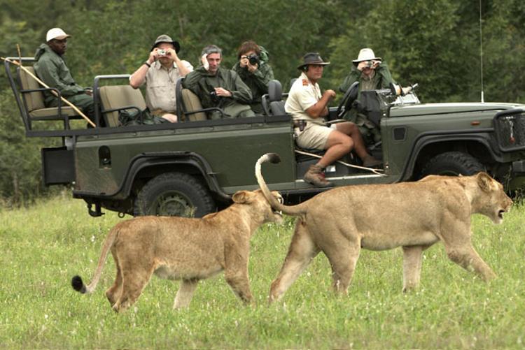 El Parque Kruger, la reserva natural más grande de Sudáfrica