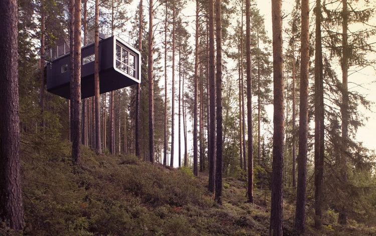 Treehotel 2