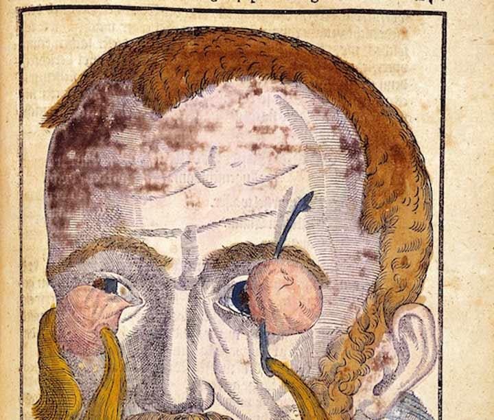 Ophthalmodouleia, un tratado de Oftalmología del siglo XVI