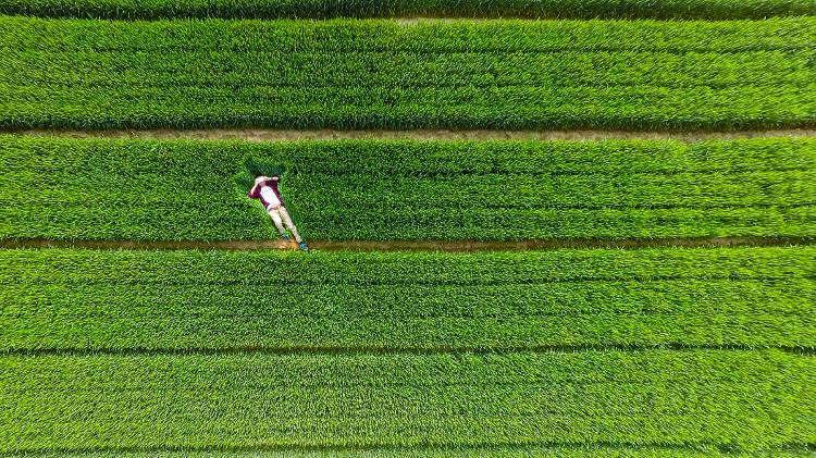 Dronestagram red social fotos drones 2