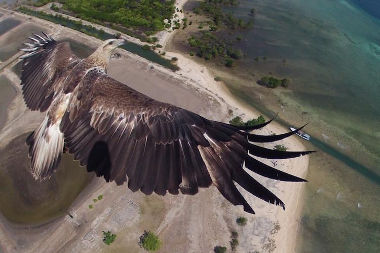 Dronestagram red social fotos drones 4