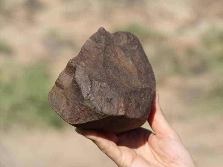 la-brujula-verde-yacimiento-Lomekwi