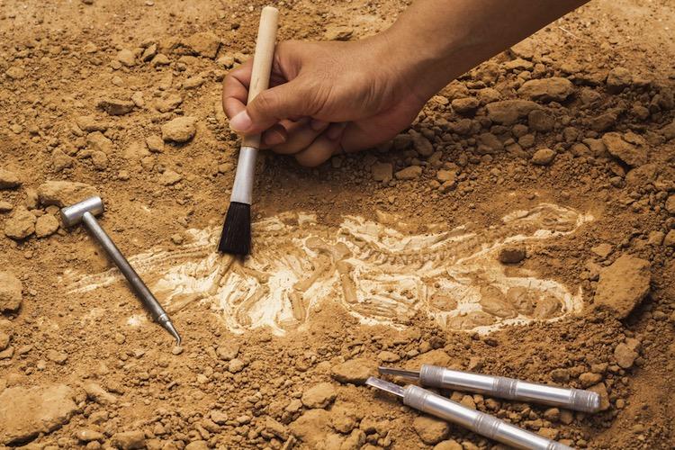Los 10 descubrimientos arqueológicos más importantes de 2015