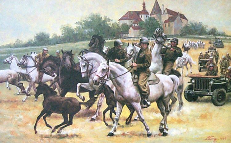 Operacion Cowboy cuando Patton salvo medio millar caballos lipizanos durante II Guerra Mundial