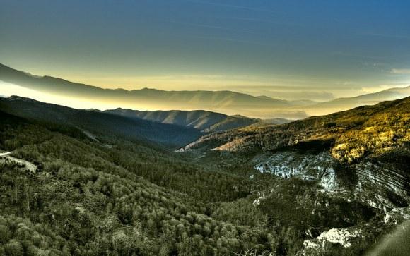 Cinco extraordinarios bosques norte España 1