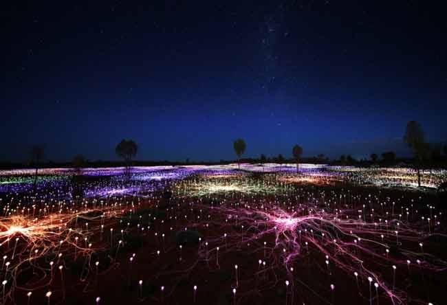 la-brujula-verde-field-of-light