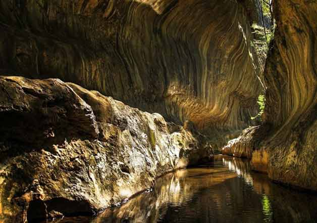 Las extrañas especies encontradas en una cueva aislada por cinco millones de años