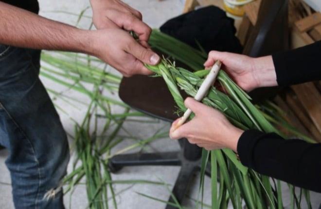 Cómo se fabricaban cuerdas en la Prehistoria hace 40.000 años
