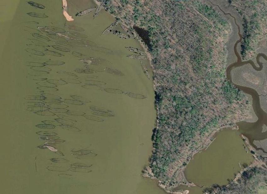 Mallows Bay, el lugar donde hay más de 200 barcos hundidos